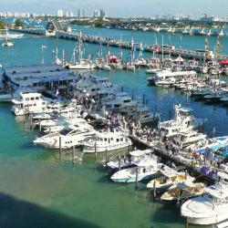 Many kinds of boats.